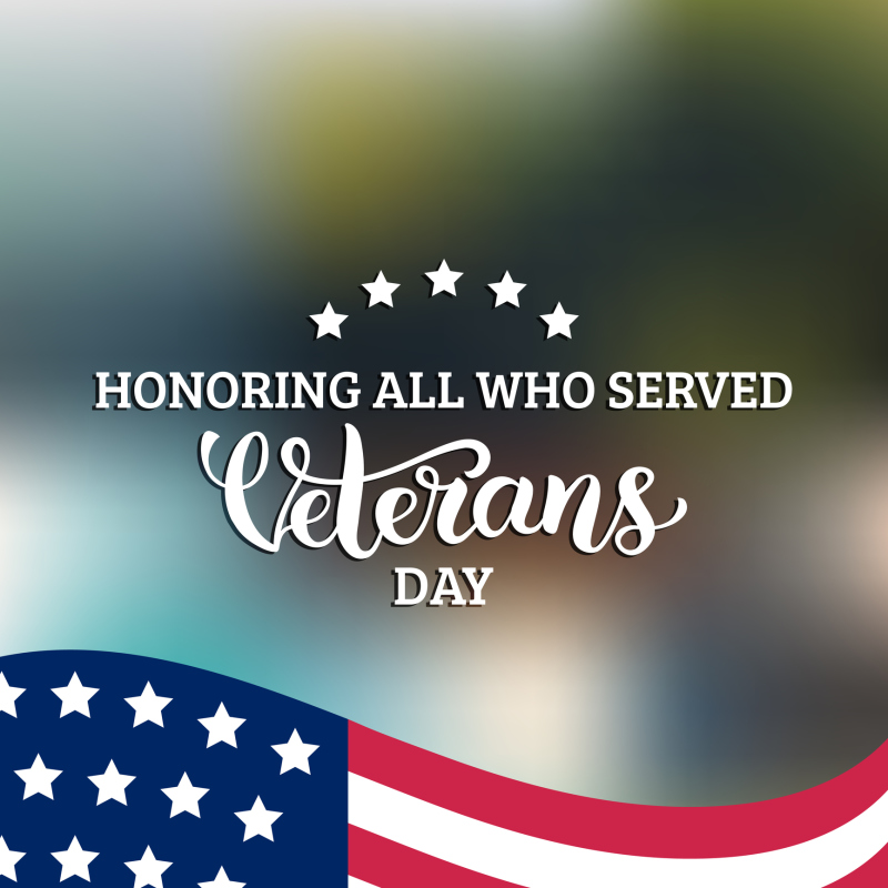 Happy Veterans Day lettering with USA flag vector illustration